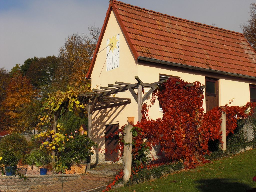Herbst-im-Garten-0