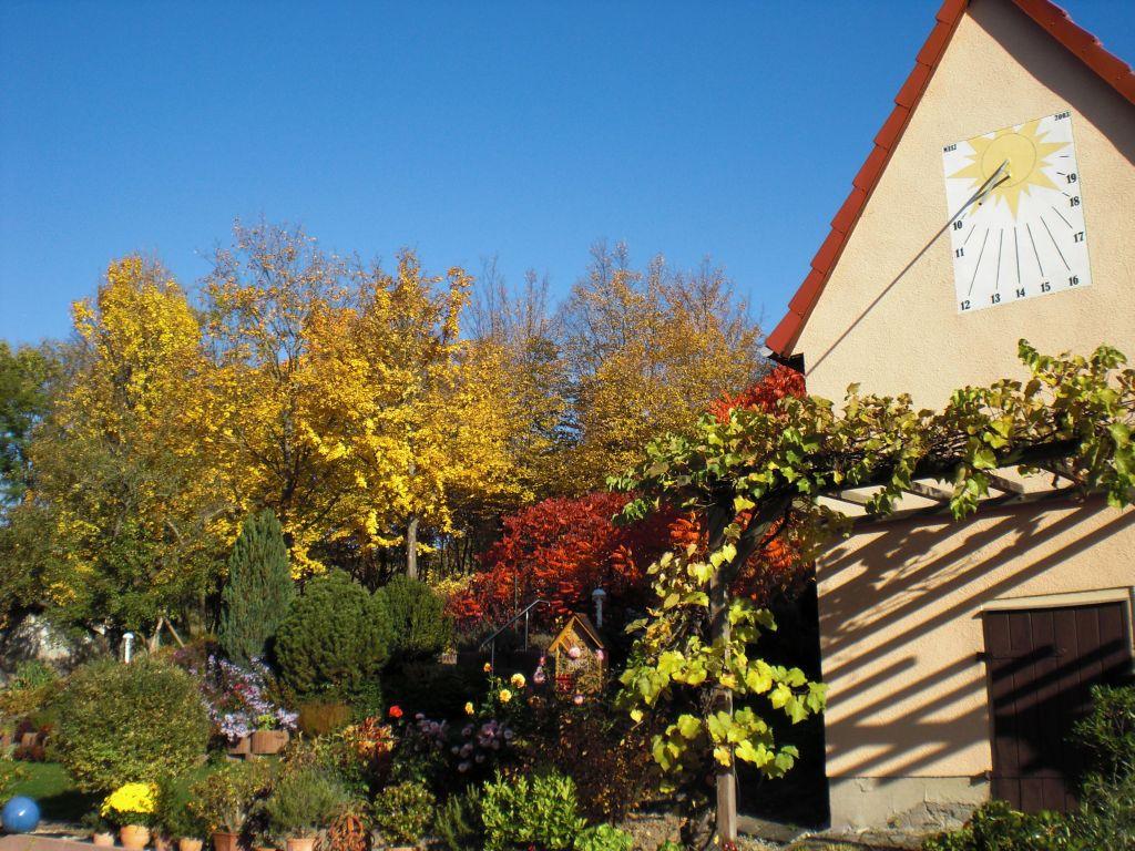 Herbst-im-Garten-1
