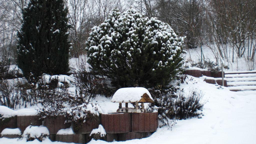 Wintert-im-Garten-1