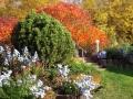 Herbst-im-Garten-4
