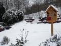 Wintert-im-Garten-2